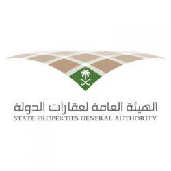 شاهد: تنمية الخالدية تبهر زوار ترفيه المملكة بمعرض الأسر المنتجة